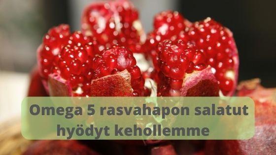 Omega-5-rasvahapon-salatut-hyodyt-kehollemme.-Tama-toistaiseksi-tuntemattomampi-omega-on-tarkea-ihomme-seka-sydan--ja-verisuoniterveydelle.-Lisaksi-on-tutkimuksia-,etta-sita-syomalla-saisi-hyotya-myos-erinaisiin-syopiin.